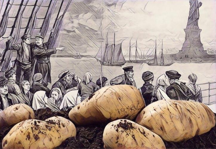 İrlanda Patates Kıtlığı